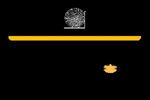 AcadNLP Logo by